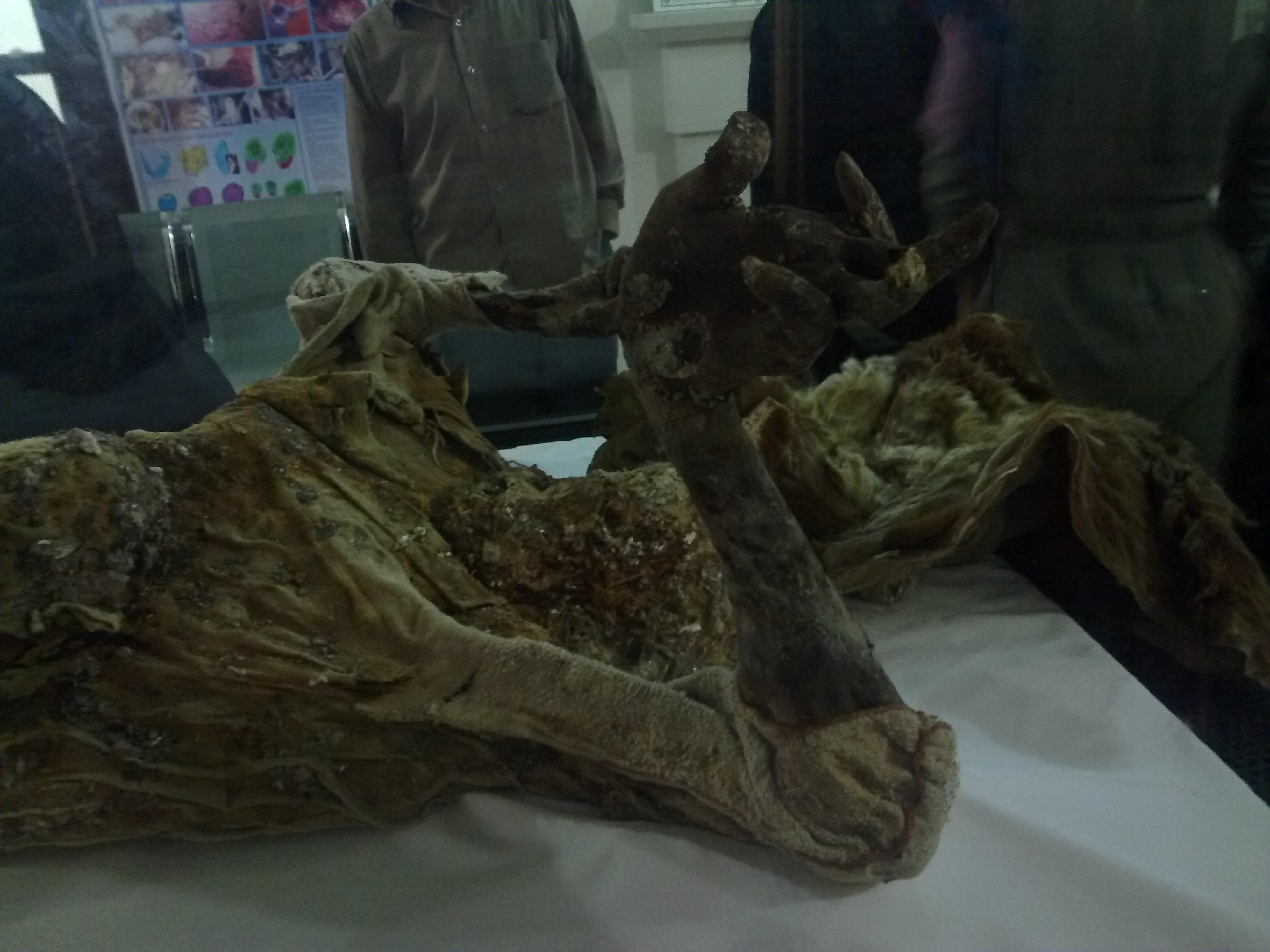 موزه مردان نمکی در خانه قدیمی «ذوالفقاری» زنجان