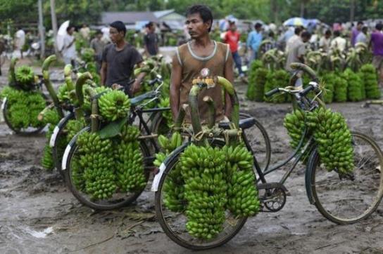 بازار فروش موز در آسام هند