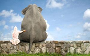 والپیپر من و بهترین دوستم فیل !
