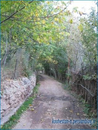 روستای امامه - مسیر امامه به کلوگان