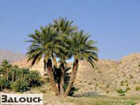 جغرافیای طبیعی بلوچستان