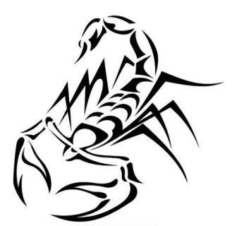 عقرب - دانلو�... Tattoos Designs