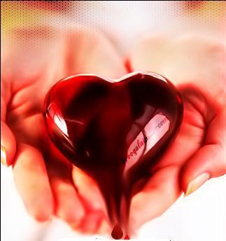 تكی دوستت دارم / عاشقانه / قلب