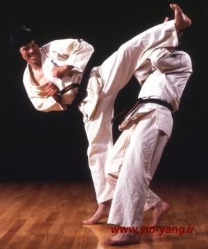 http://s1.picofile.com/file/7569629244/karate.jpg