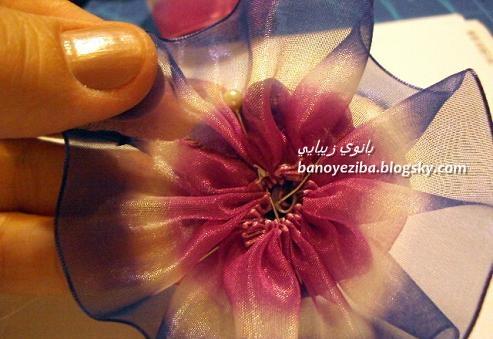 گل رز روی کلیپس