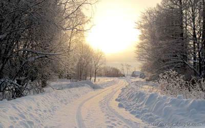 والپیپیر + زمستان + برف + جاده برفی + کیفیت عالی + hd