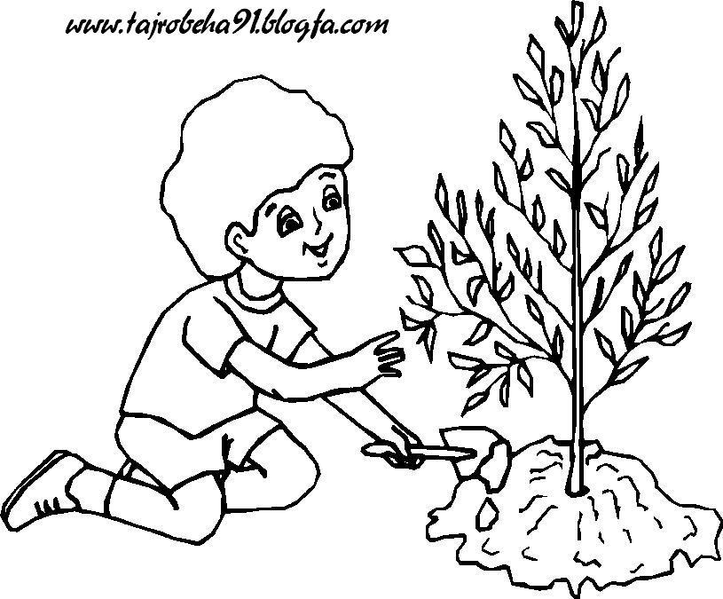 روز درخت کاری