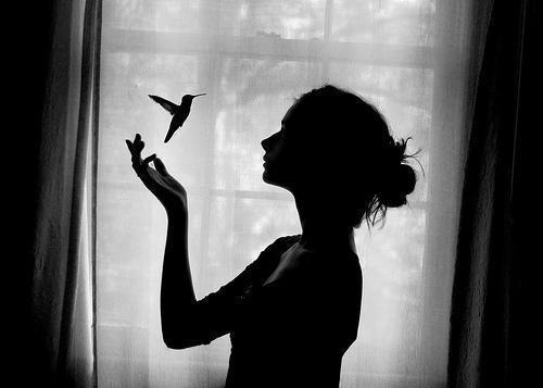 پر میکشم از پنجره ی خواب تو تا تو هر شب من و دیدار،در این پنجره با تو از خستگی روز همین خواب پر از راز کافیست مرا،ای همه خواسته ها تو دیشب من و تو بسته ی این خاک نبودیم
