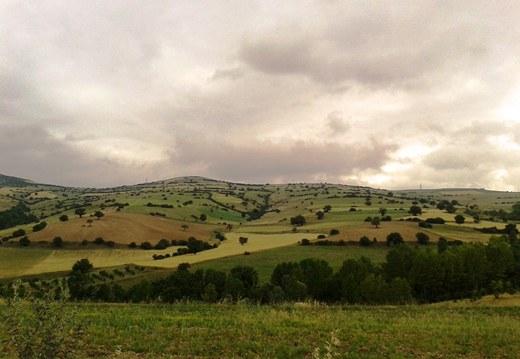 منظره ی پریده رنگ تپه ها