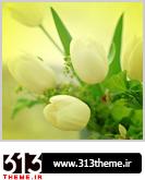 http://s1.picofile.com/file/7838001933/8.jpg