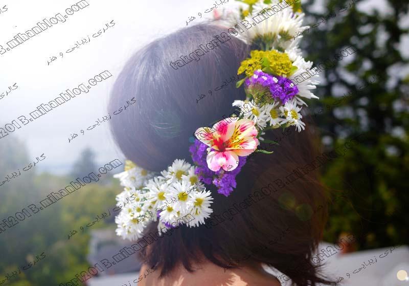 http://s1.picofile.com/file/7880114301/taj_gol.jpg
