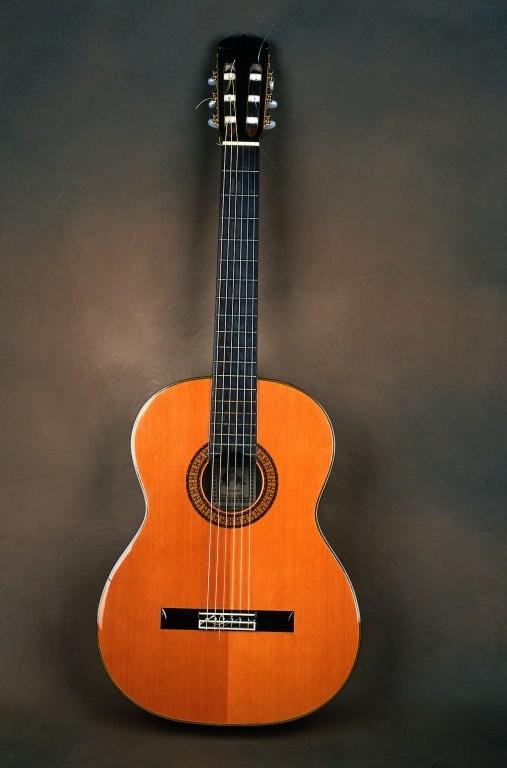 گالری عکس های موسیقی ( گیتار )