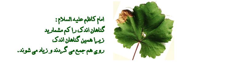 شهادت امام موسی بن جعفر علیه السلام تسلیت . نوای دل