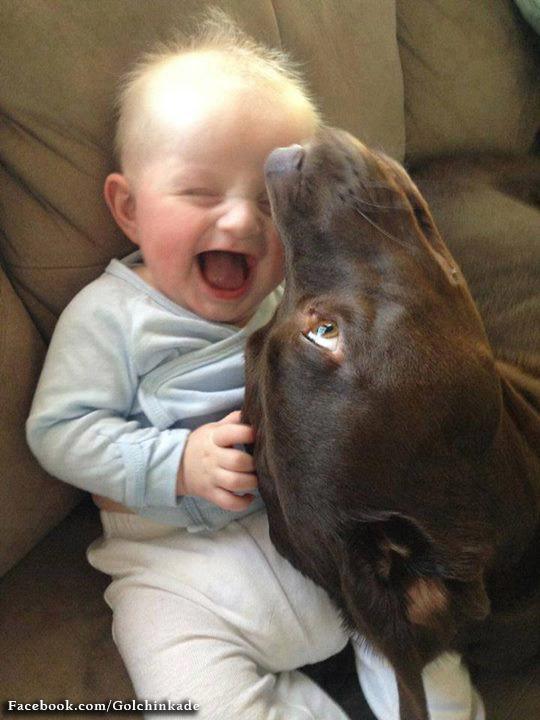 بچه و سگ