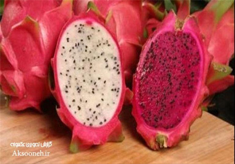 عکس های دیدنی از میوه های عجیب دنیا
