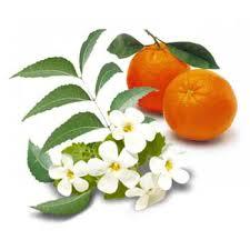 مزایای نارنج و بهار نارنج