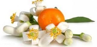 نارنج چه خواصی دارد