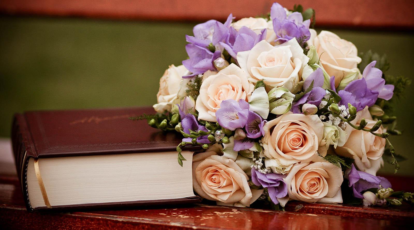دانلود رمان از غرور تا عشق جاوا، اندروید، pdf، تبلت