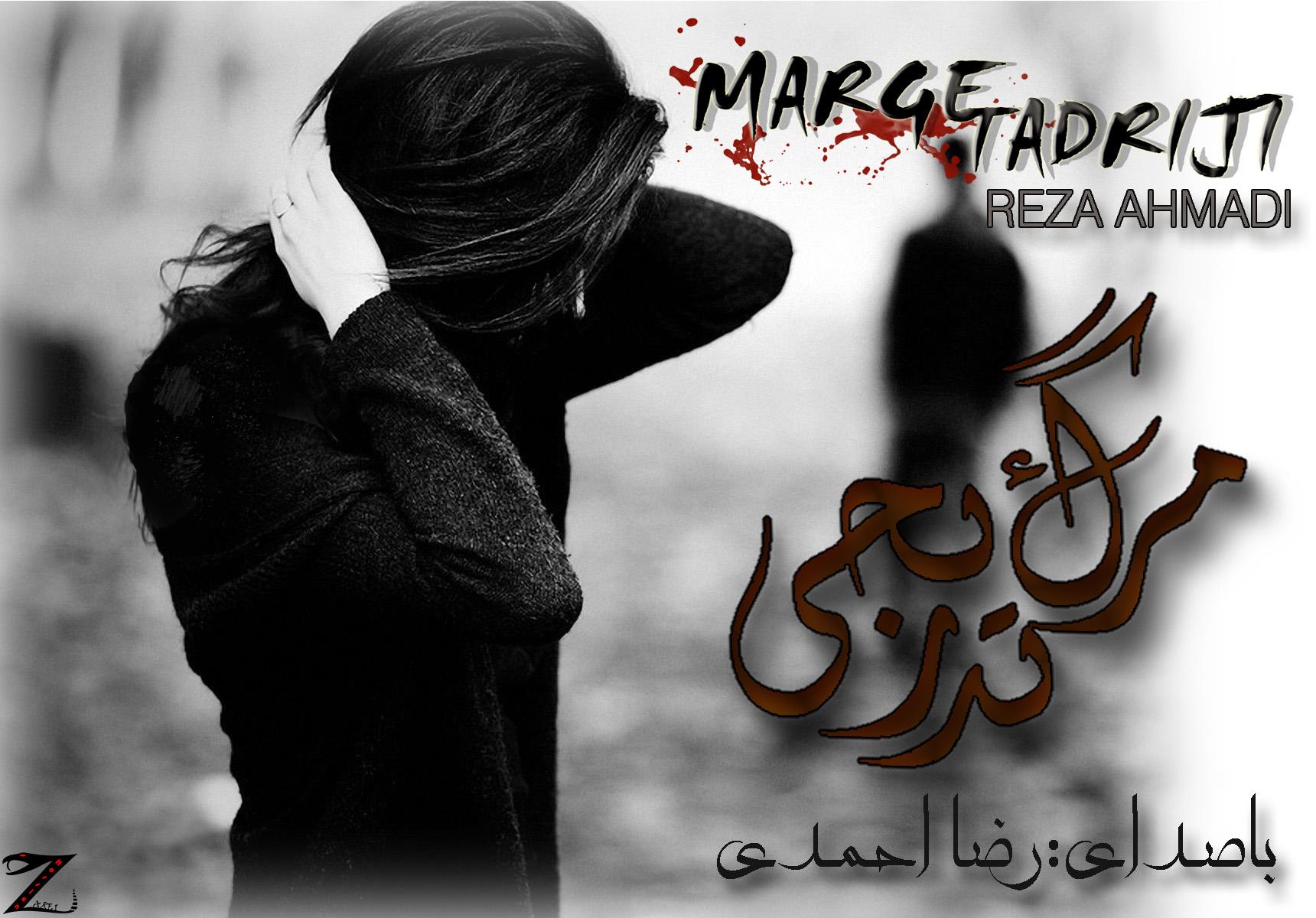 IMG_Reza_Ahmadi_Marge_Tadriji_.jpg