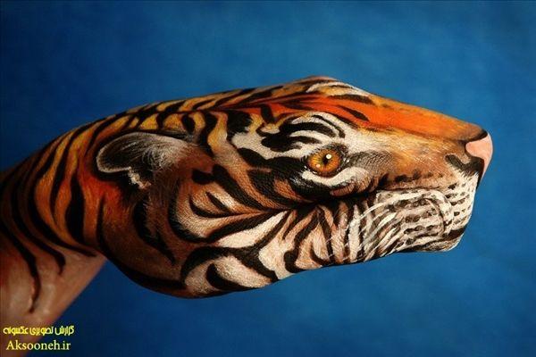 زیباترین تصاویر هنرنمایی با دست