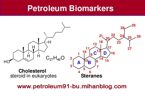 http://s1.picofile.com/file/8264526526/Oil_Biomarkers.png
