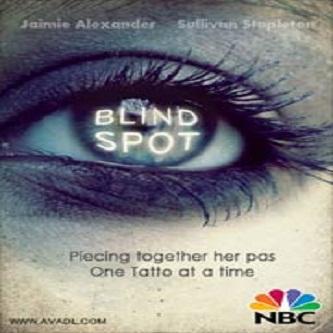 دانلود فصل 1 قسمت 5 سریال نقطه کور - Blindspot