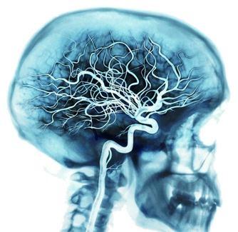حقیقت های شگفت انگیز و جالب در مورد بدن انسان