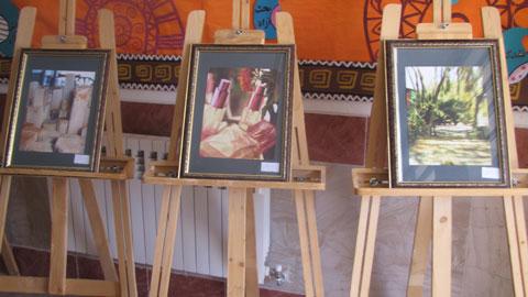 نمایشگاه عکس طبیعت در شهرستان رستم