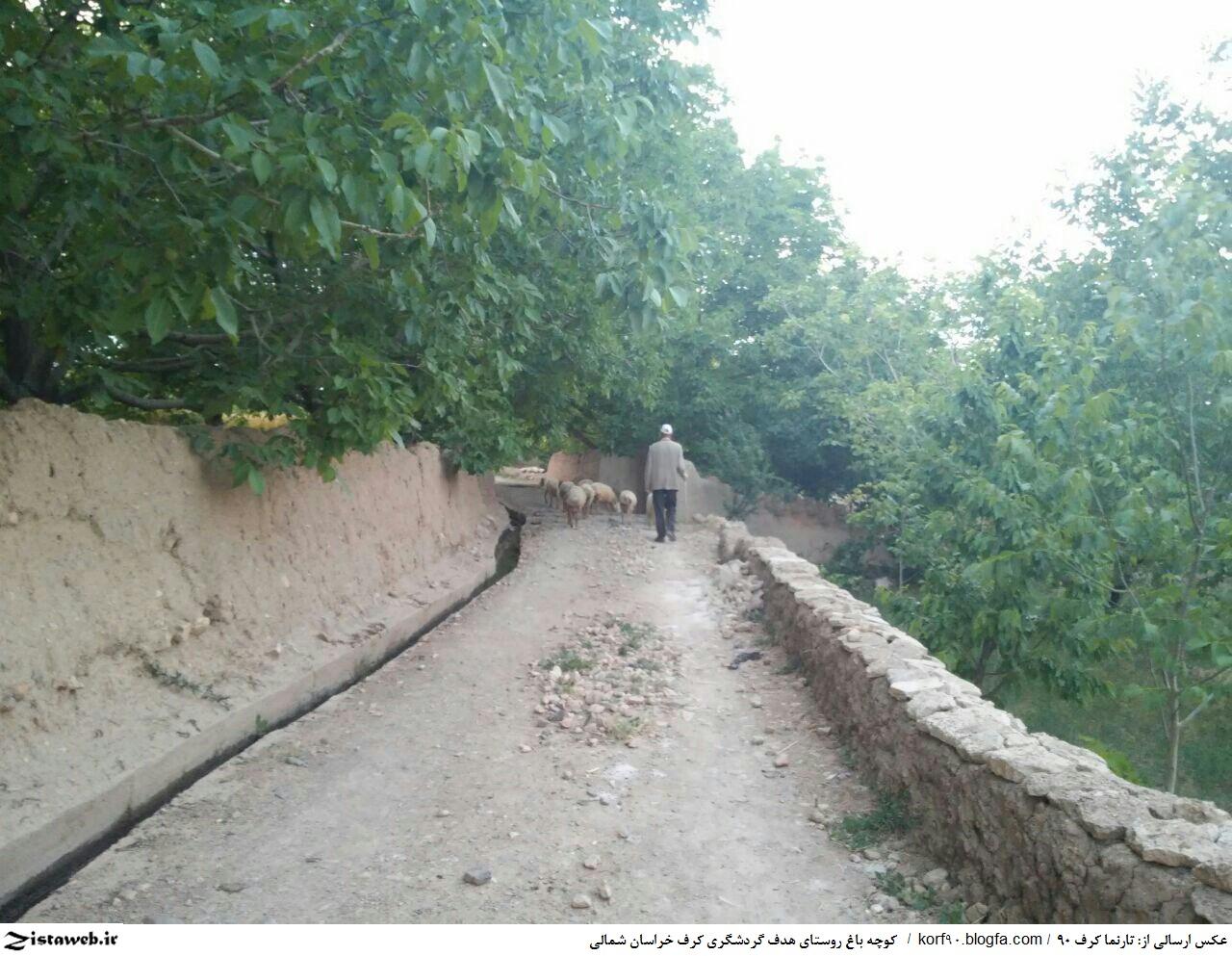 عکسی از کوچه باغ روستای گردشگری کرف شهر سنخواست استان خراسان شمالی