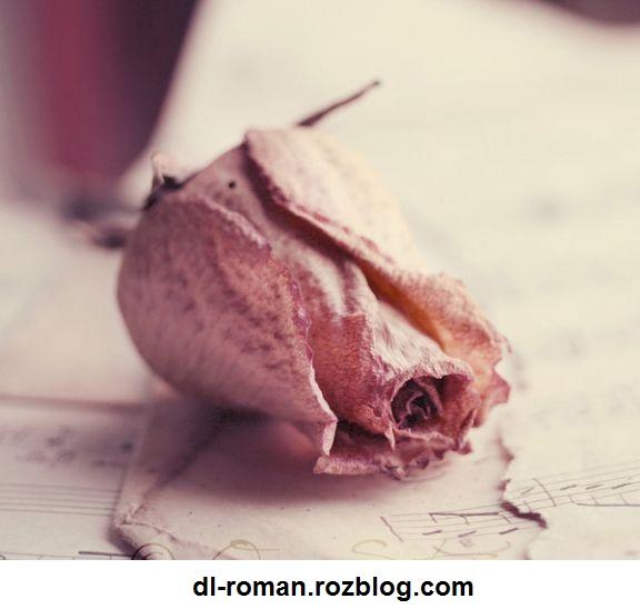 دانلود رمان نفرت،انتقام،عشق