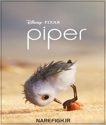 دانلود انیمیشن Piper 2016 با لینک مستقیم و کیفیت Full HD1080P