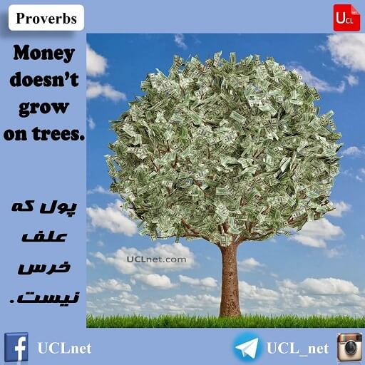 Money doesn't grow on trees - پول که علف خرس نیست -English Proverb